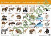 Животные дальних стран. Жывёлы далекiх краiн. Интерактивный плакат.